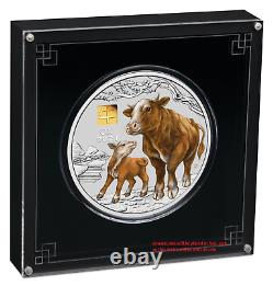 2021 Lunar Year of the OX 1 Kilo Silver $30 Coin NGC MS70 with Gold Privy Mark