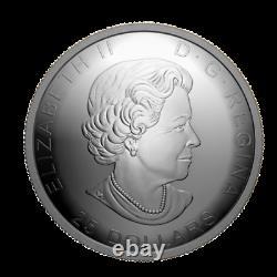 1oz Pure Argent Concave Coin125e Ani. De La Ruée Vers L'or Du Klondike Veuillez Lire