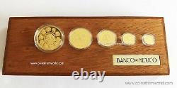 2013 Mexique Mexicain Libertad 5 Coin Proof Gold Set Box - Coa Banco De Mexico