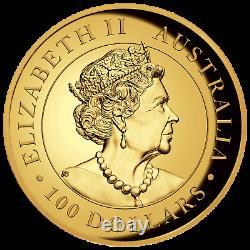 2019 Australie Kangourou Proof High Relief 1 Oz 9999 Or $ 100 Ngc Pf70 Coin Er