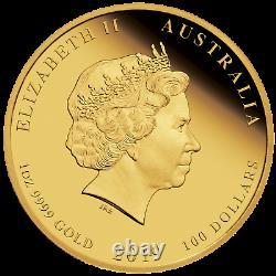 2019 P Australie Proof $ 100 Couleur Or Année Lunaire Du Pig Ngc Pf70 1 Oz Coin