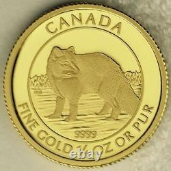 Canada 2014 10 $ Renard Arctique 99,99 % Pièce Numismatique Non Circulée À L'épreuve De L'or Pur