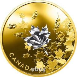 Canada -2017'whispering Maple Leaves' Reverse-gold-plaqué Proof $50 Silver Coin